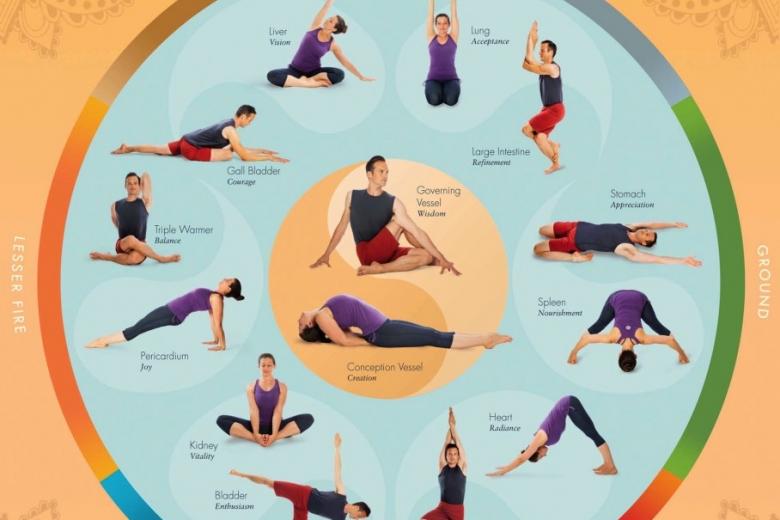 Meridian Yoga Level 2 Certification